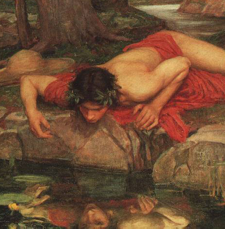 Narcissus_cropped.jpg